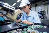 Ngành nào có triển vọng nhất trong 3 năm tới tại Việt Nam?