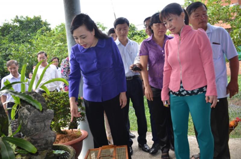 Không để dịch sốt xuất huyết ảnh hưởng đến Hội nghị APEC