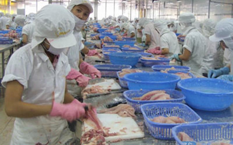 Công bố hơn 800 sản phẩm thủy sản lưu hành trái phép