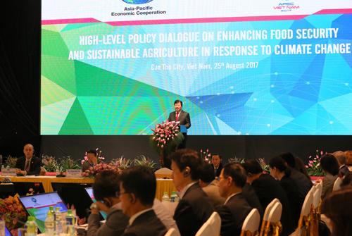 Việt Nam sẵn sàng phối hợp với các thành viên APEC bảo đảm an ninh lương thực