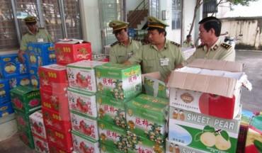 Thu giữ gần 1 tấn trái cây Trung Quốc và nửa tấn nội tạng 'bẩn'