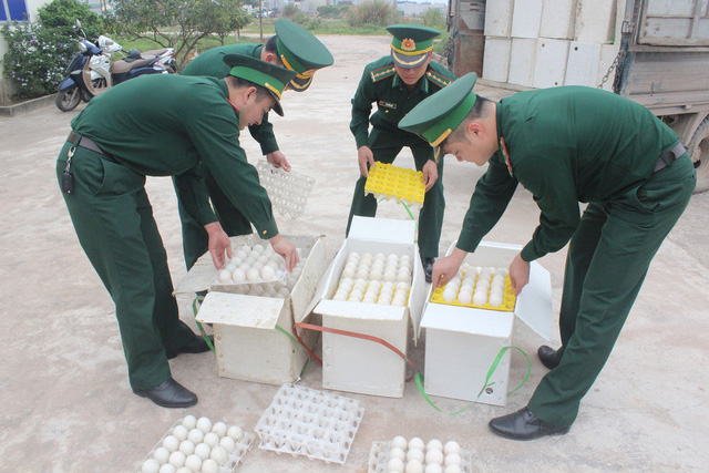 Tịch thu 5.400 quả trứng gia cầm không rõ nguồn gốc