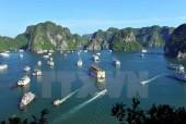 Quảng Ninh đình chỉ hoạt động 4 tàu du lịch trên Vịnh Hạ Long