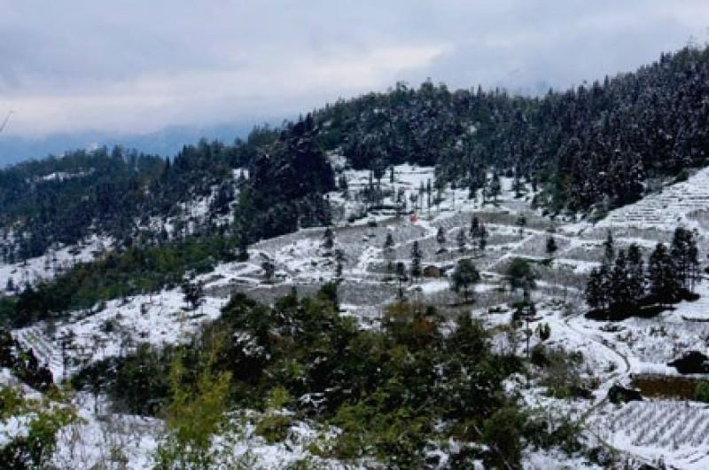 Mùa đông năm nay sẽ có nhiều đợt rét đậm, rét hại hơn