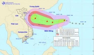 Bão Khanun áp sát quần đảo Hoàng Sa sức gió mạnh cấp 9, giật cấp 12