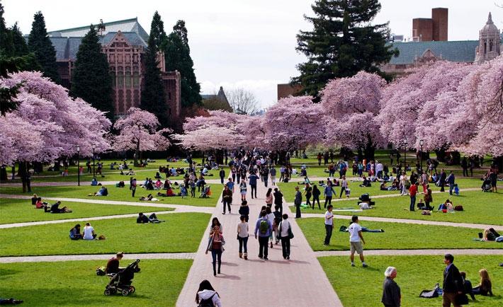 12 trường đại học tốt nhất thế giới