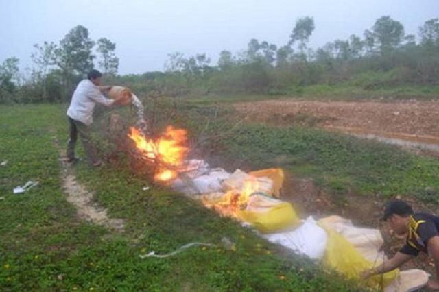 Tiêu hủy hơn 1 tấn dăm bông không rõ nguồn gốc