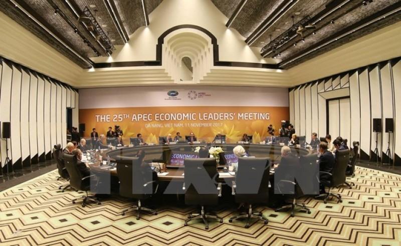 Khai mạc Hội nghị các nhà lãnh đạo kinh tế APEC lần thứ 25 ở Đà Nẵng