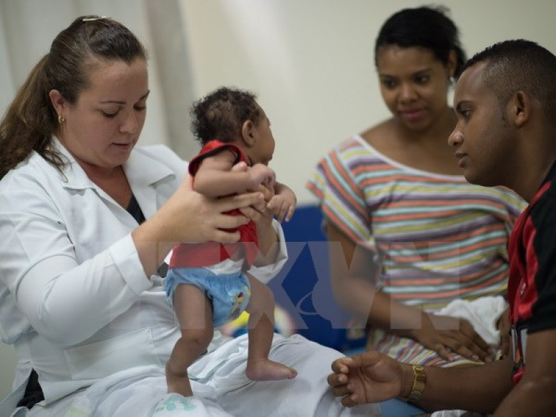 Virus Zika có thể sinh sôi trong não của các thai nhi và nhau thai