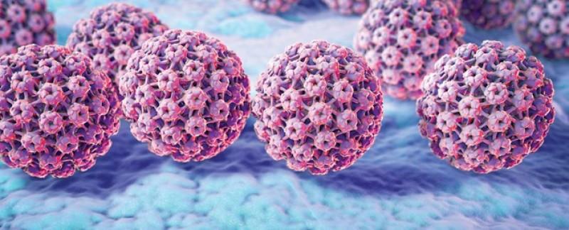 Virus HPV thầm lặng hủy diệt sức khỏe phụ nữ như thế nào?