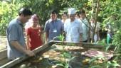 Huyện Phúc Thọ: Đẩy mạnh triển khai cuộc vận động 3 sạch