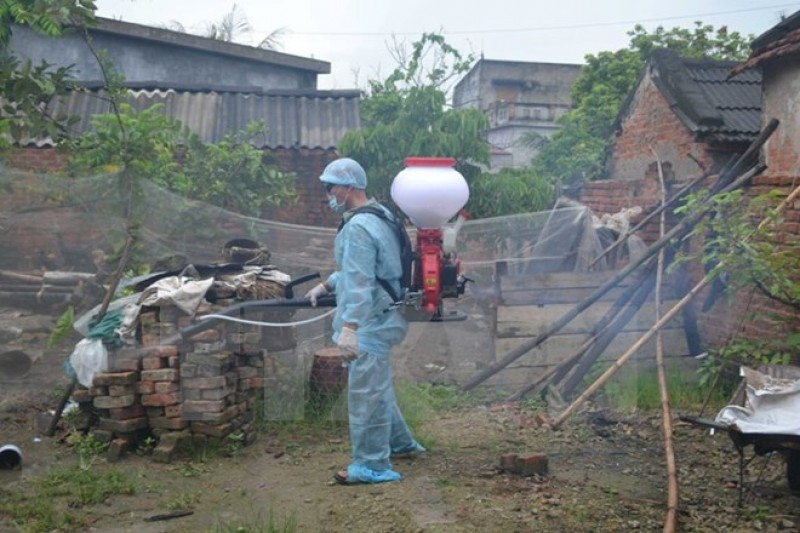 Hà Nội ghi nhận hơn 37.000 người mắc bệnh sốt xuất huyết