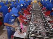 Báo chí Pháp: Việt Nam là một trong những nền kinh tế hiệu quả khu vực
