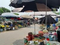 Tiềm ẩn nguy cơ ô nhiễm môi trường, mất vệ sinh an toàn thực phẩm