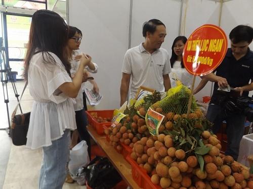 Khai mạc Tuần lễ vải thiều Lục Ngạn lần thứ tư tại Hà Nội