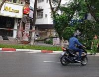Hà Nội: Một người điều khiển xe máy tử vong vì đâm phải cây đổ