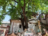 Đình Trung Tự - Nơi lưu giữ nhiều kỉ vật vô giá