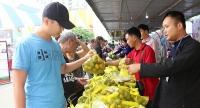 Người dân Thủ đô hào hứng với nông sản sạch Bắc Kạn