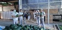 Đề nghị ưu tiên sử dụng nông sản vào bữa ăn cho người lao động