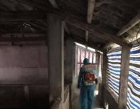 Sẽ bị phạt hành chính nếu mang theo các chế phẩm từ thịt lợn vào Đài Loan