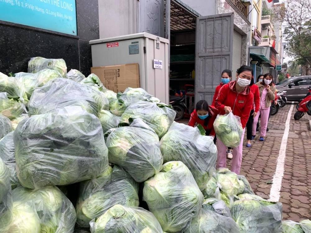 Đoàn viên công đoàn Long Biên tích cực hỗ trợ tiêu thụ nông sản giúp nông dân Hải Dương