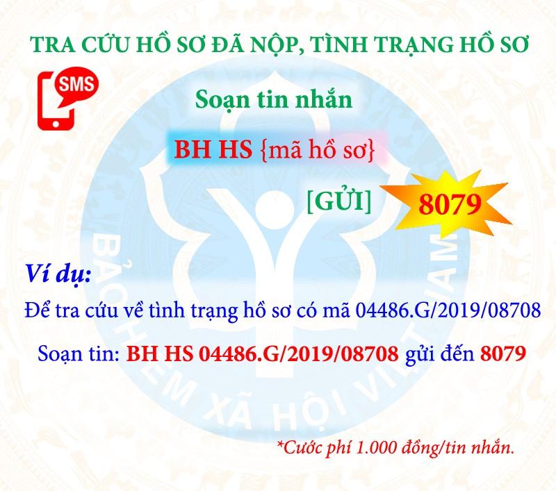 chu dong nam bat qua trinh tham gia bhxh bhyt qua dau so 8079
