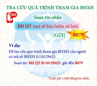 Bảo hiểm xã hội Việt Nam tiếp tục đứng đầu về ứng dụng công nghệ thông tin