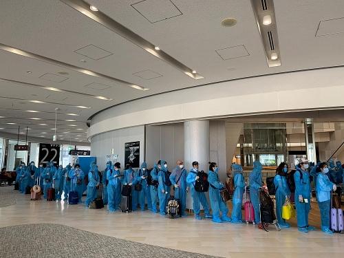 Đưa hơn 300 công dân Việt Nam từ Singapore về nước tránh dịch