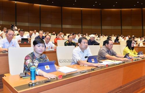 ILO hoanh nghênh bước tiến lớn nhằm xóa bỏ lao động cưỡng bức tại Việt Nam