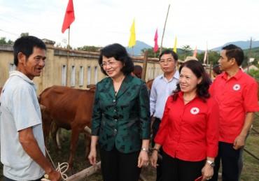 Trao tặng bò giống tới đồng bào nghèo ở Minh Long, Quảng Ngãi