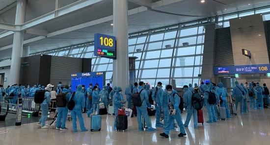 Hơn 560 công dân Việt Nam được đón về nước an toàn