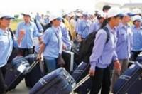 5 công ty XKLĐ bị dừng việc đưa lao động sang Đài Loan