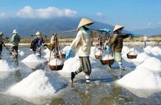 Phải nhập khẩu muối đến bao giờ?