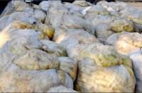 TPHCM: Phát hiện 43 tấn măng ngâm chất độc suốt 2 năm