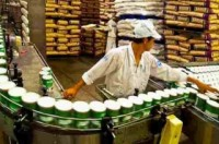 Sẽ thanh tra 5 doanh nghiệp sữa lớn