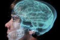 10 điều bổ ích bạn có thể làm hàng ngày để nâng cao trí tuệ