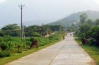 100 tỷ đồng thực hiện các dự án đường giao thông nông thôn