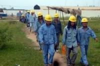 Quản lý lao động nước ngoài làm việc tại Việt Nam