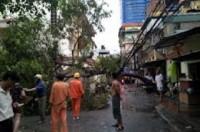 Hàng chục cây xanh bị quật ngã vì mưa lốc, 1 người chết