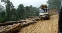 """Ra """"tối hậu thư"""" cho 8 doanh nghiệp thủy điện không chịu trồng lại rừng"""