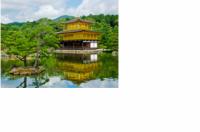 Đón năm mới 2015 tại Nhật Bản với chuyên cơ riêng