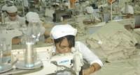 CĐ ngành Dệt may Hà Nội hỗ trợ kịp thời lao động khó khăn