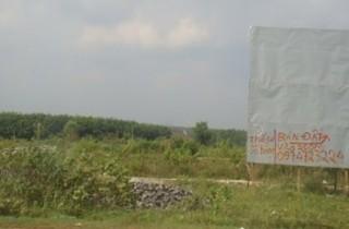 """""""Cò"""" đất """"đón gió"""" dự án sân bay Long Thành"""