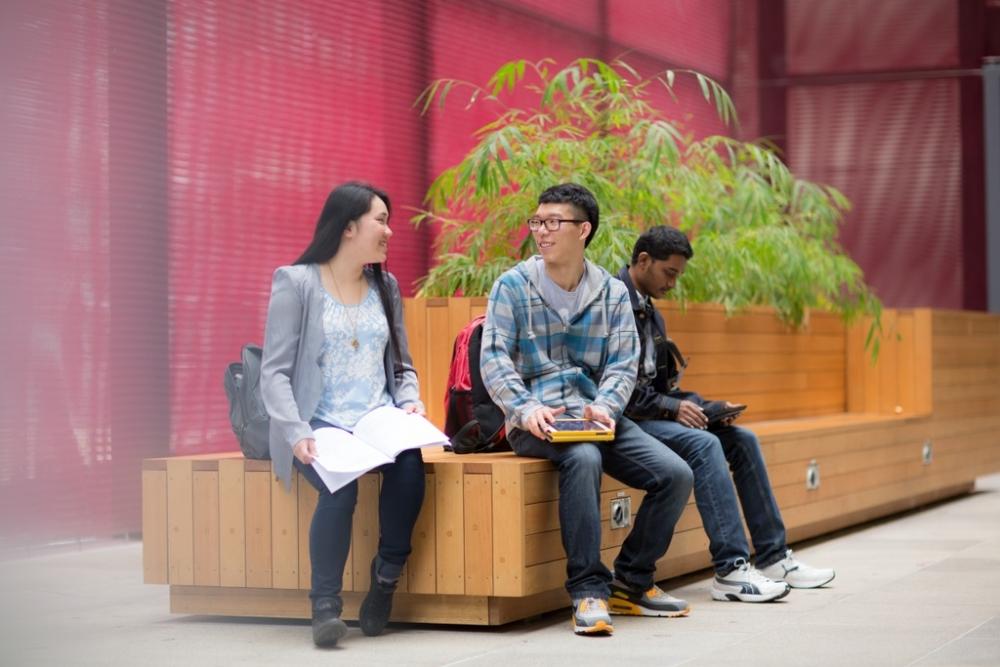 New Zealand tiếp tục mở cửa đón 1.000 sinh viên quốc tế quay trở lại