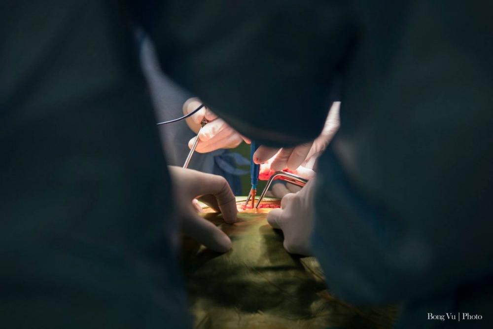 Dưới ánh đèn phẫu thuật