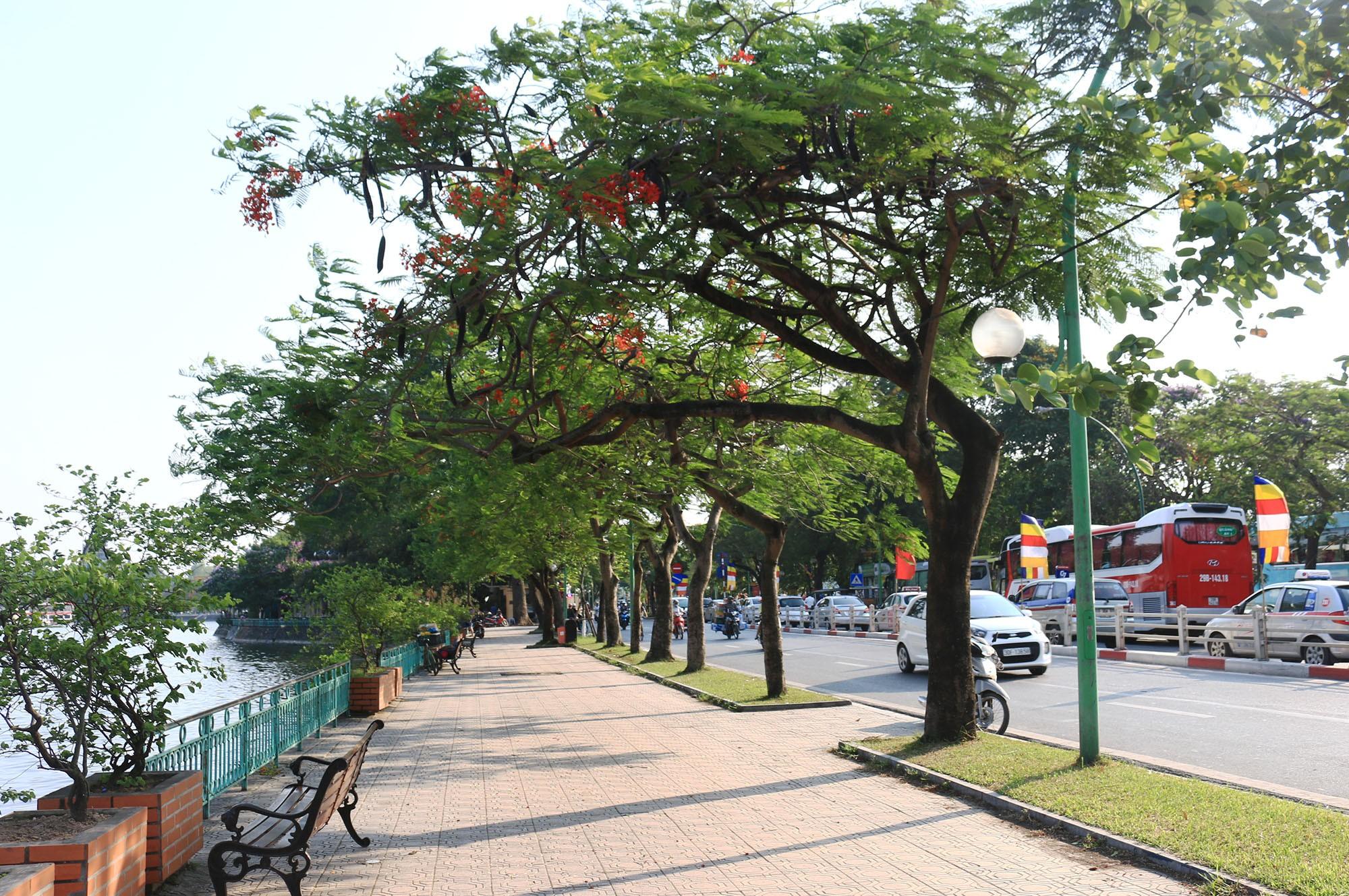 Hà Nội: Tăng cường đảm bảo vệ sinh môi trường