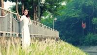 Hà Nội: Những bụi hoa cỏ lau trắng muốt làm sông Tô Lịch thơ mộng lạ thường