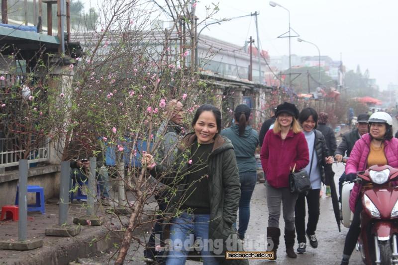 Đào Nhật Tân khoe sắc tại chợ hoa Quảng An trước thềm Tết Nguyên đán
