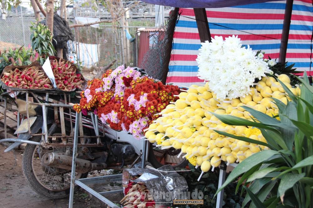 Chợ hoa Mê Linh đìu hiu vì dịch Covid-19