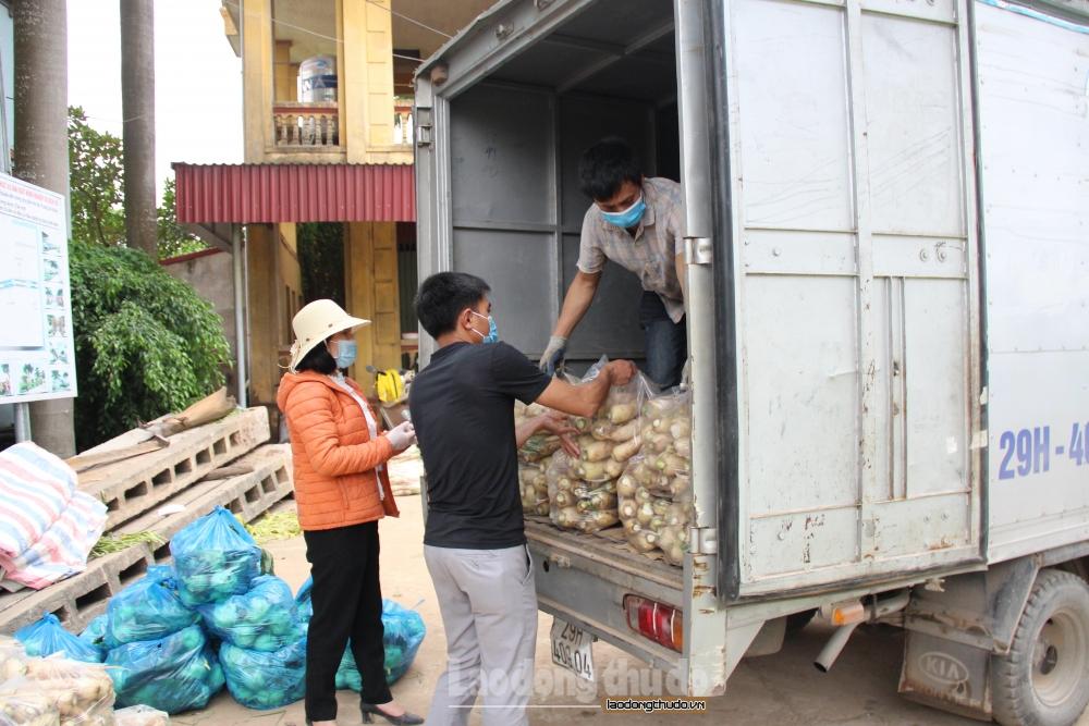 Nhiều mặt hàng nông sản ở Đông Cao (Mê Linh) bị ùn ứ, không tìm được đầu ra